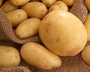 6_картопля