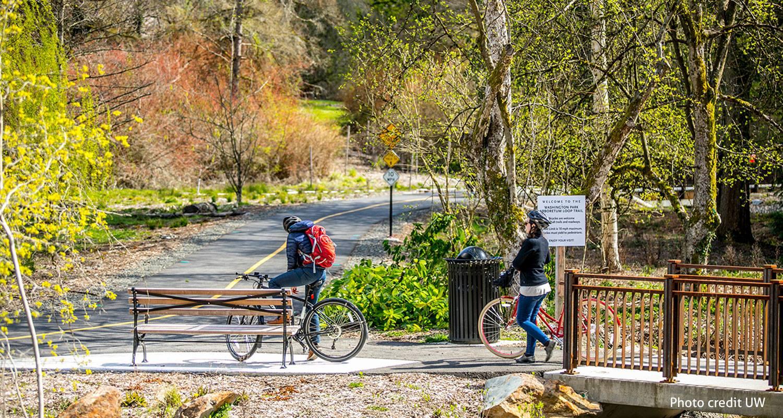 Зелені коридори: чому вони потрібні  кожному місту