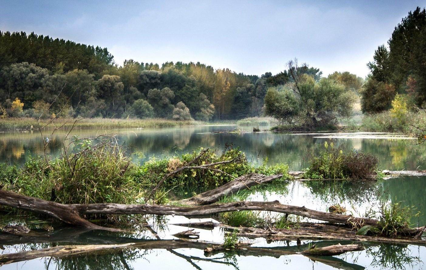 Ренатуралізація – як оживити малі річки?