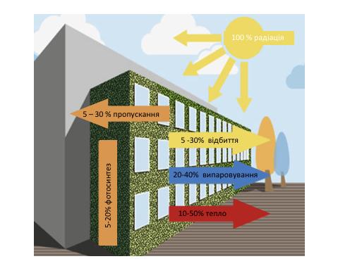 Енергетичний балан фасаду із озелененням