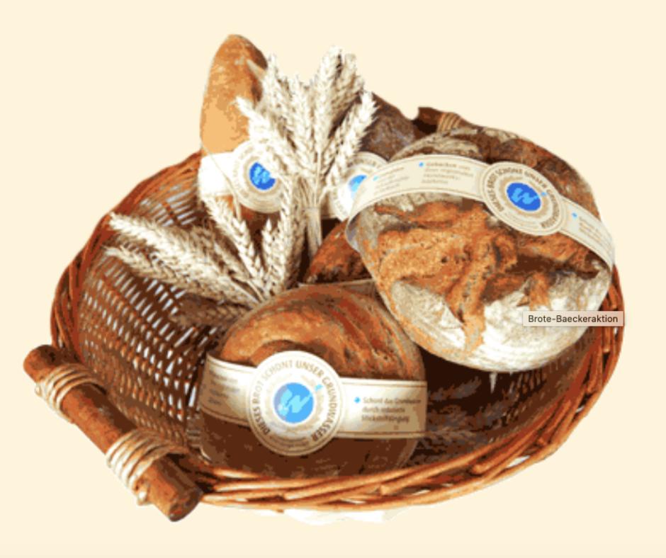 Хліб, що береже підземні води